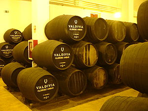 Oloroso - Barrels of Oloroso at Valdivia