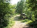 Valle Sessera, boschi di Bocchetto Séssera.jpg
