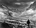 Valle del Aconcagua(2).jpg