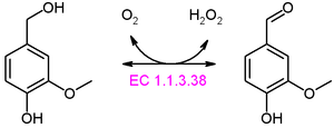 Dehydrogenase - Reaction catalyzed by an oxidase, note the reduction of oxygen as the electron acceptor