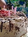 Vegan Chocolate Cake (3846344921).jpg