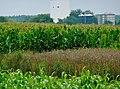 Versuchsstation für Pflanzenbau und Pflanzenschutz Ihinger Hof (Universität Hohenheim) - panoramio.jpg