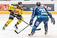 Vienna Capitals vs Fehervar AV19 -76.jpg