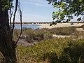 View on Laguna dos Patos.jpg