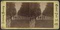 View on the Mall - the Promenade, from Robert N. Dennis collection of stereoscopic views.png