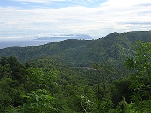 View to Atauro island through lush wet season regenerating secondary forest amongst shifting agriculture patches, near Bazartete, Liquica (2 Apr 2006).jpg