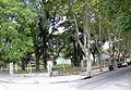 Villa Luro-Centro Tutzo de Bonifacio1.jpg