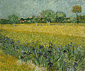 Vincent van Gogh - Veld met bloemen bij Arles - Google Art Project.jpg