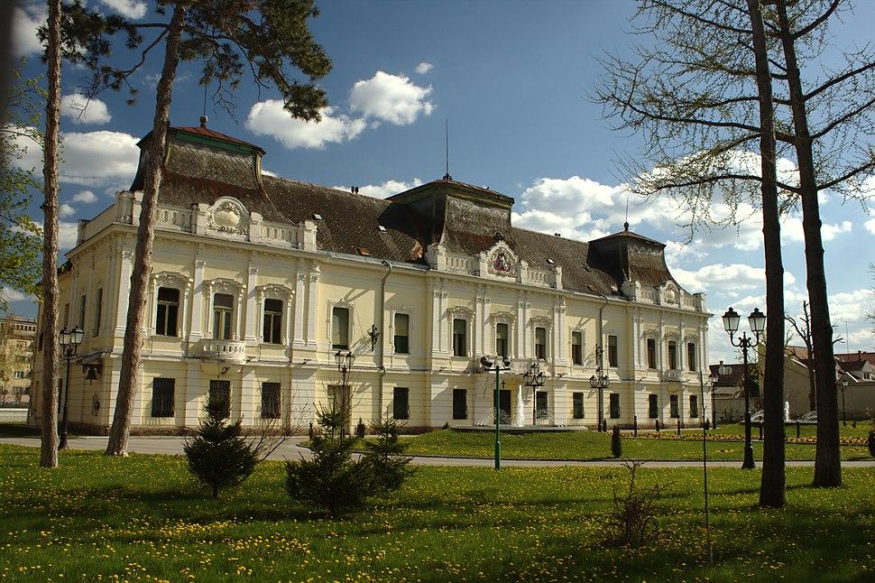 Vršac, Vladičanski dvor