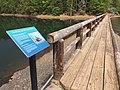 Walkway on Lost Creek Lake.jpg