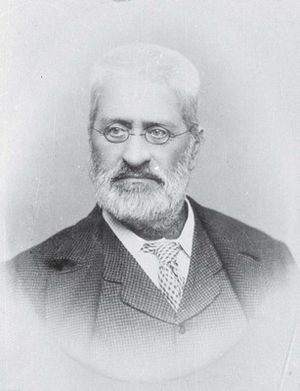 Minister for Māori Development - Image: Walter Mantell