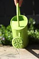Watering-can-green.jpg