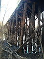 Watertown Branch trestle.agr.jpg