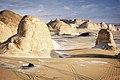 White Desert (2).jpg
