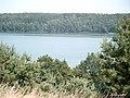 Widok na jezioro Czos z górki - panoramio - Kucyk (1).jpg