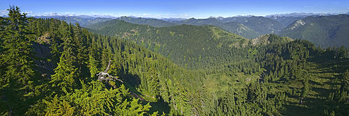 View east from Evergreen Ridge, Wild Sky Wilderness Area, Washington, USA