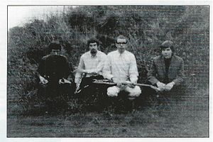 The Wilde Flowers - The Wilde Flowers 1965