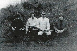 The Wilde Flowers British band