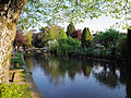Windrush River Bourton.jpg