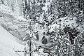 Winter at Firehole Falls (24232310646).jpg