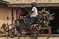 Woman transporting wood on a bicycle.jpg