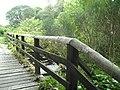 Wooden bridge Altyre estate - geograph.org.uk - 564760.jpg