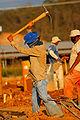 Working man-obrero 2.jpg