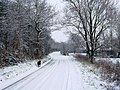 Wortwell Low road in the snow - geograph.org.uk - 415370.jpg