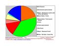Wright County Minnesota Native Vegetation Pie Chart.pdf