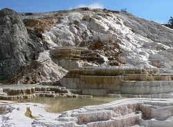 Formations calcaires aux Mammoth Hot Springs.