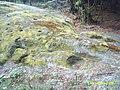 Yumrukkaya - panoramio (2).jpg