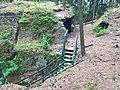 Zřícenina Kozlov-Chlum - schody 4.jpg