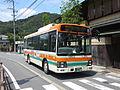 Zentan Bus.JPG