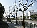 Zhangjiang Hi-Tech Park.jpg