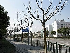Zhangjiang Hi-Tech Park - Zhangjiang Hi-Tech Park, Zuchongzhi Road, Shanghai.