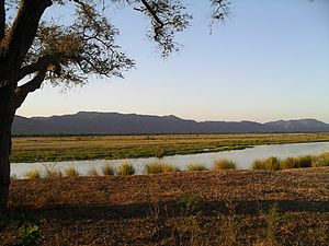 Zambezi River from Mana Pools