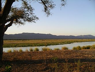 Zimbabwe - The Zambezi River in the Mana Pools National Park.