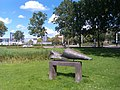 Zwemmer-Woerden-IMAG1456.jpg