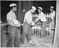 """Enlisted men serving on Espiritu Santo in the New Hebrides...placing 6-inch shells in magazines at the Naval Ammunition - NARA - 520631.tif"