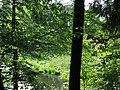 (PL) Polska - Warmia - Las Miejski w Olsztynie - The City Forest in Olsztyn - zakole rzeki Łyna - Lyna river bend (28.VIII.2012) - panoramio (2).jpg