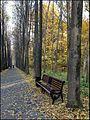 Ботанический сад - panoramio (13).jpg