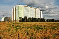 Левенцовский (Ливенцовский) район Ростова-на-Дону.jpg