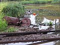 Невская Дубровка, загрязнение речки Дубровка - panoramio.jpg