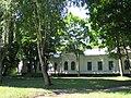 Парк біля садиби Лизогубів, с.Седнів, Чернігівська обл..JPG