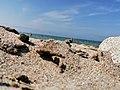 Побережье бухты Улан-Хушин.jpg