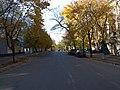 Улица Карла Маркса - panoramio (1).jpg