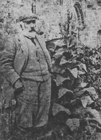 William Logan (author) - William Logan