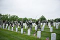 """""""Flags in"""" with The Old Guard in Arlington National Cemetery (17951152165).jpg"""