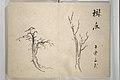 『大雅堂画譜』-Taigadō (Taiga Hall at Sōrinji Temple) Picture Album (Taigadō gafu) MET 2013 842 07 crd.jpg