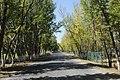 中国新疆乌鲁木齐市米东区 China Xinjiang Urumqi, m East Area, China - panoramio (178).jpg